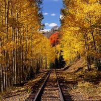 train colorado.jpg
